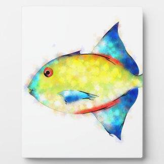 Plaque Photo Esperimentoza - poisson magnifique