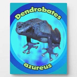 Plaque Photo Grenouille bleue de dard de poison
