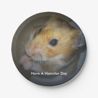 Plaques à papier de hamster assiettes en papier