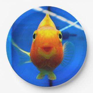 Plaques à papier de sourire de poisson rouge assiettes en papier