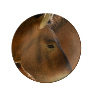 Plat de cheval sauvage assiette en porcelaine