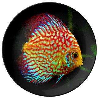 Poisson tropical assiettes poisson tropical motifs pour for Aquarium plat