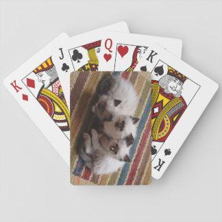 Plate-forme de Ragdoll des cartes Cartes À Jouer