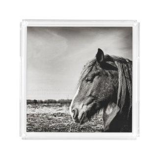 Plateau de portion de cheval noir et blanc