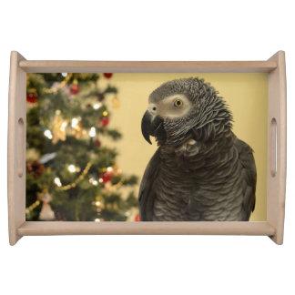 Plateau de portion de perroquet de Noël