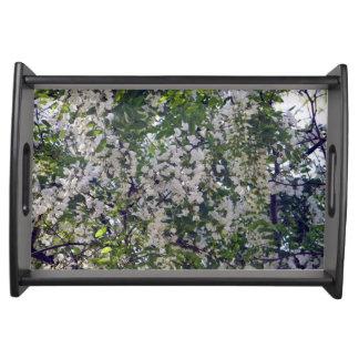 Plateau de portion, fleurs sauvages de sauterelle