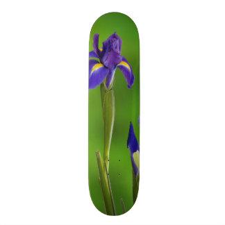 Plateau De Skateboard Fleurs d'iris