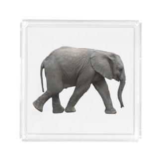 Plateau En Acrylique Éléphant africain