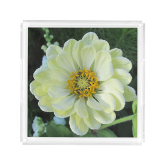 Plateau En Acrylique Fleur jaune-clair de dahlia