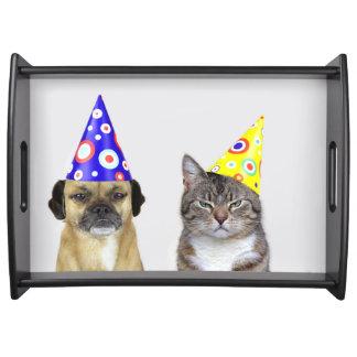 Plateau Frustré chien et chat avec des Partyhütchen