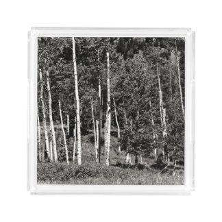 Plateau noir et blanc extérieur de portion de