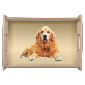 Plateau Peinture d'art de couleur d'eau de chien de golden