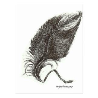 Plume d'Eagle Carte Postale