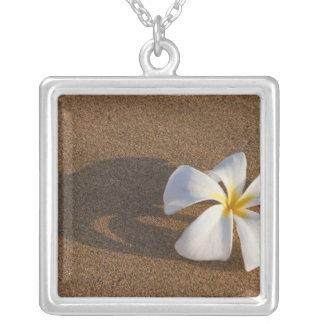 Plumeria sur la plage sablonneuse, Maui, Hawaï, Collier