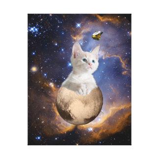 Pluton, chaton, et New Horizons, nébuleuse et Toiles