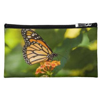 pochette photo d'un papillon sur une fleur