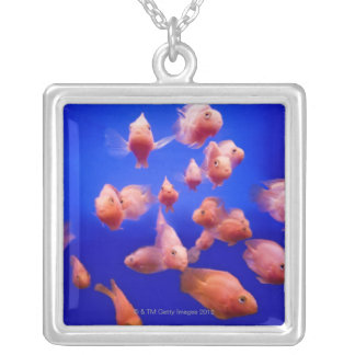 Poisson rouge 2 collier