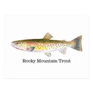 Poissons de truite de montagne rocheuse cartes postales