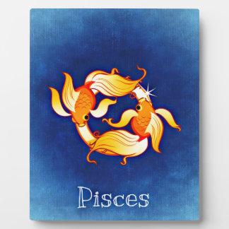 Poissons Plaque Photo