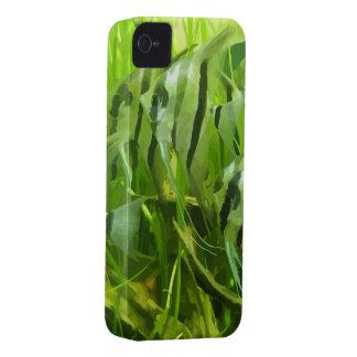 Poissons verts coque iPhone 4