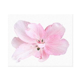 Pomme sauvage fleurissent copie de toile
