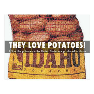 Pommes de terre de l'Idaho Carte Postale