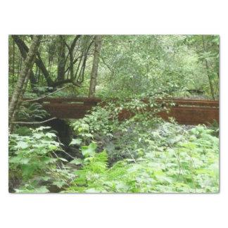Pont I en bois de Muir Papier Mousseline