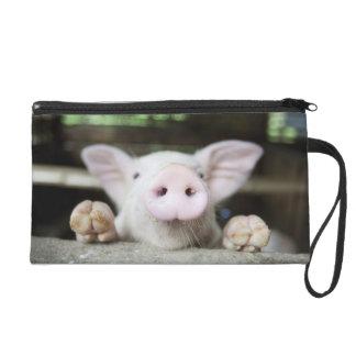 Porc de bébé dans le stylo, porcelet sacs à main avec dragonne