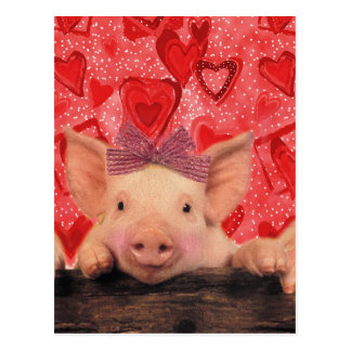 Porcs mignons de Valentine Carte Postale