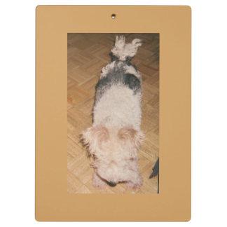 """Porte - bloc avec l'image """"de Fox Terrier à poils"""