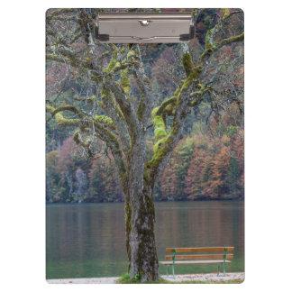 Porte-bloc Banc tranquille le long d'un lac, Allemagne