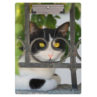 Porte-bloc Chat curieux avec la photo drôle de monture de