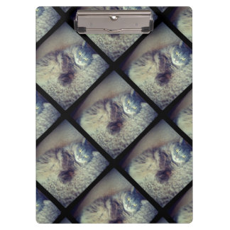 Porte-bloc Collage de chat par Shirley Taylor