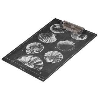 Porte-bloc coquillages botaniques français côtiers de tableau