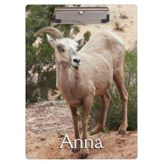Porte-bloc Mouflons d'Amérique drôles au parc national de