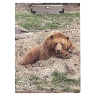 Porte-bloc Petit somme d'ours