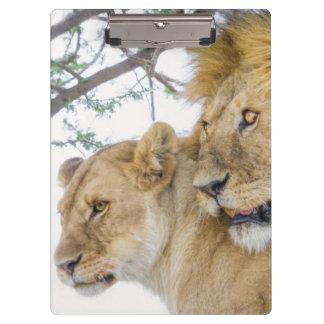 Porte-bloc Porte - bloc de couples de lion