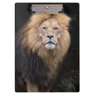 Porte-bloc Portrait de plan rapproché d'un lion masculin