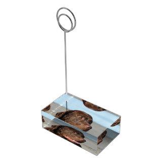 Porte-cartes De Placement Chocolat labrador retriever