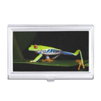 Porte-cartes De Visite Le Costa Rica, grenouille d'arbre aux yeux rouges