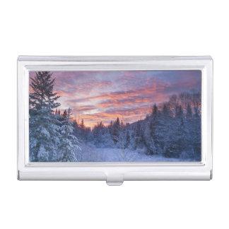 Porte-cartes De Visite Le coucher du soleil vif peint le ciel au-dessus