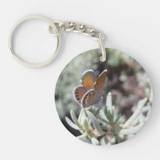 Porte - clé bleu pygméen occidental de papillon porte-clés