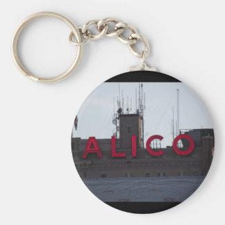 Porte - clé de bâtiment d'Alico Porte-clés
