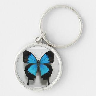 porte - clé de bleu de papillon porte-clés