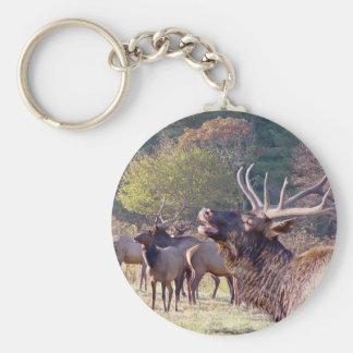 Porte - clé de troupeau d'élans porte-clés