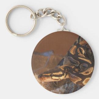 Porte - clé royal de python porte-clés