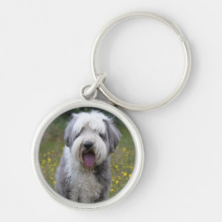 Porte-clés Belle photo de chien barbu de colley, cadeau