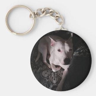 Porte-clés Bull-terrier blanc du Staffordshire dans les