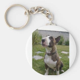 Porte-clés bull-terrier sitting.png brindle