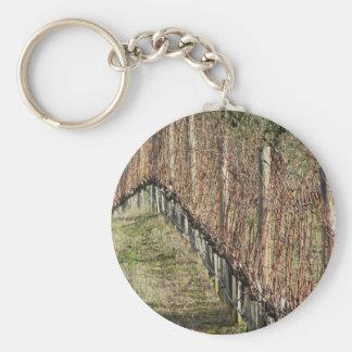Porte-clés Champ nu de vignoble en hiver. La Toscane, Italie